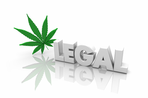 Legalized Marijuana for Recreational Use: What You Need to Know